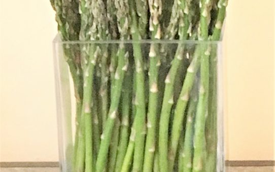 The Day of the Asparagus